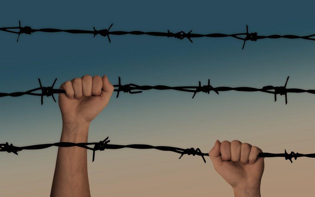 Händer håller i taggtråd.